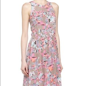 Rebecca Taylor Floral Fit-And-Flare Dress, Coral